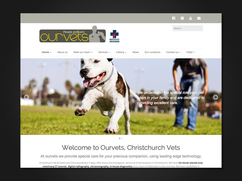 BDSolutions-folio-ourvet2
